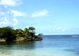 Roatan, Honduras - Diving the Best